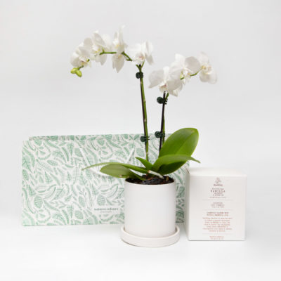 Orchid Gift Set Candle