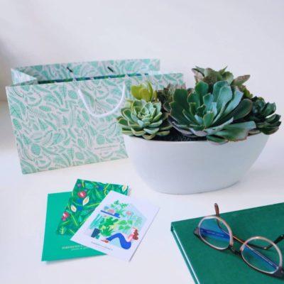 Succulent Bowl Gift Succulents
