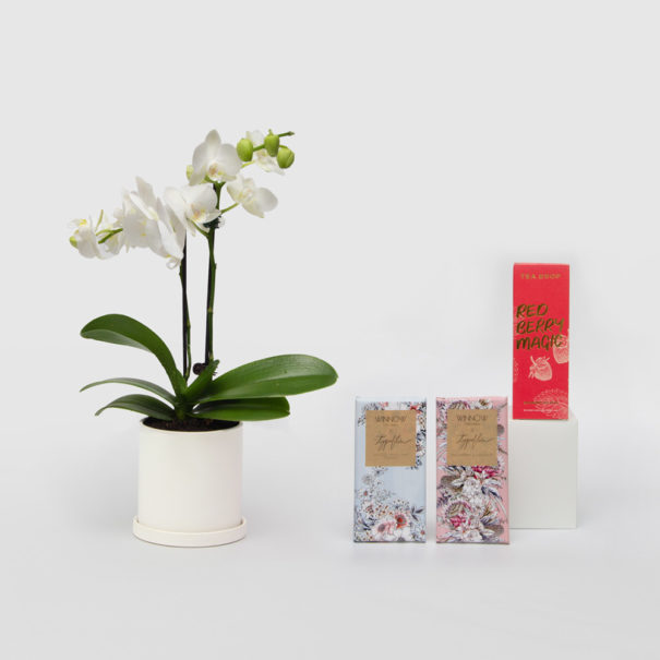 Orchid Living Gift Set Winnow Chocolates Tea Drop