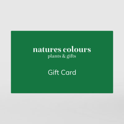 Natures Colours Plants and Gifts Gift Card