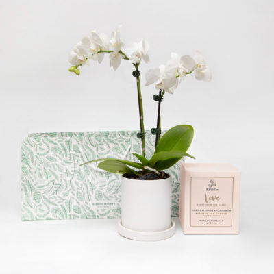 Orchid Living Gift Set Urban Rituelle Soy Candle Love