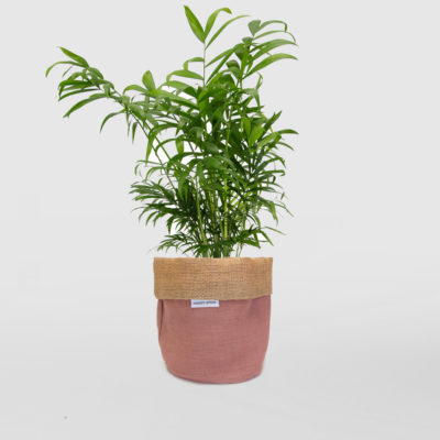 Parlour Palm Planter Bag Pink Blush Small