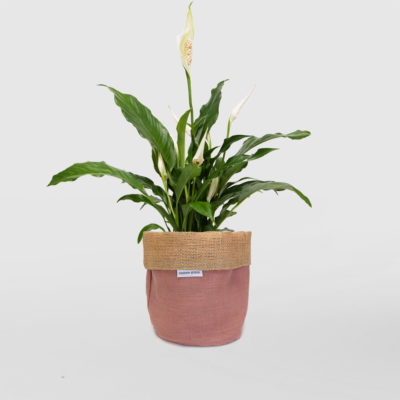 Peace Lily Planter Bag Pink Small