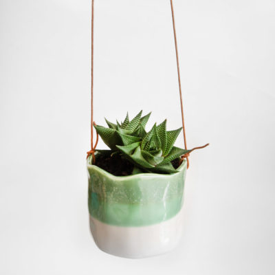 Succulent Hanging Pot Fern Wave