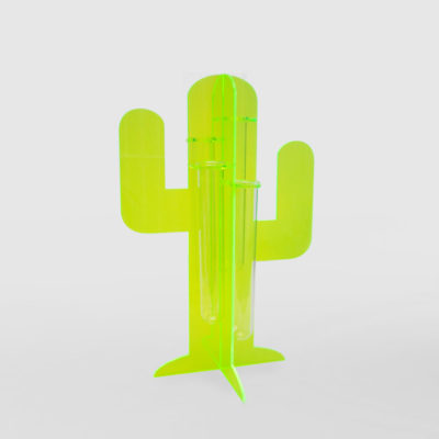 Acrylic Cactus Stand Propagation Station