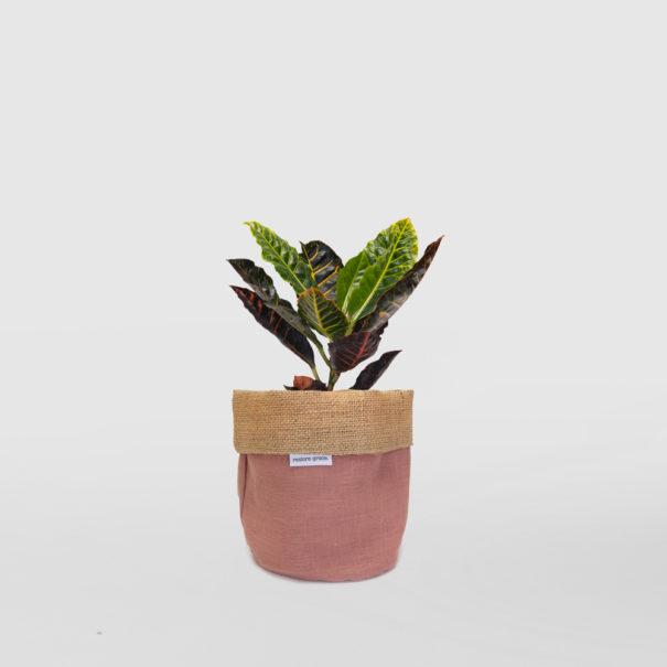 Croton Planter Bag Pink Small