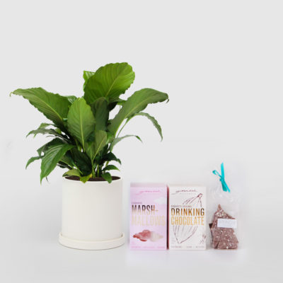 Peace Lily Chocolate Gift Set