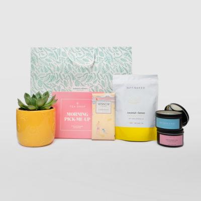 Succulent Yellow Pot Bright Living Gift Set